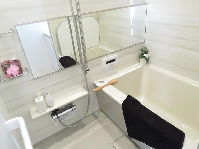 六義園サマリヤマンション バスルーム