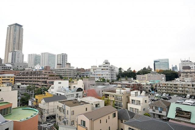 インペリアル赤坂フォラム ルーフバルコニー眺望
