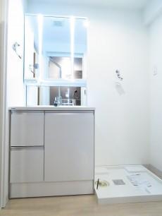 エンゼルハイム馬事公苑 洗面化粧台と洗濯機置場