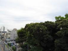 マコトパレス キッチン横バルコニー眺望