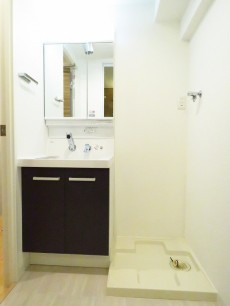 ルモン広尾 洗面化粧台と洗濯機置場