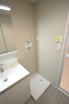 宏和マンション 洗面室