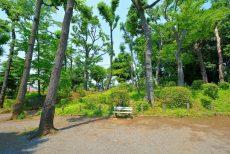 日商岩井豪徳寺マンション (73) 周辺環境