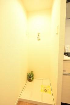 赤坂パレスマンション ランドリースペース