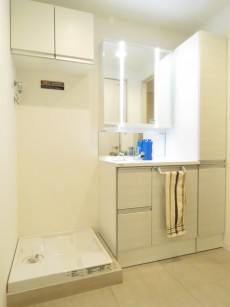 ダイアパレス都立大 洗濯機置場と洗面化粧台