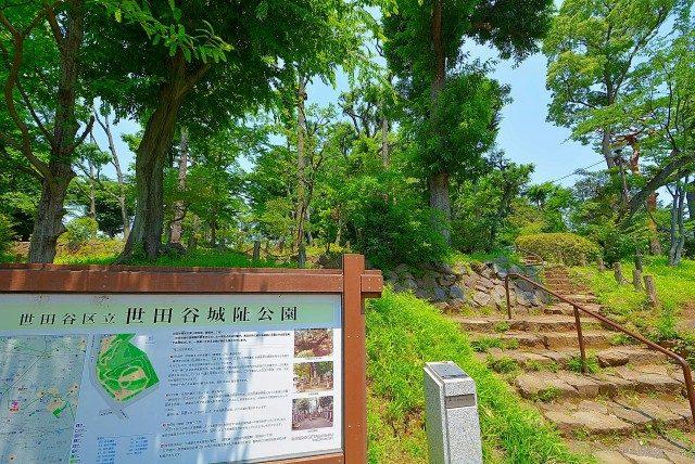 日商岩井豪徳寺マンション (75) 周辺環境