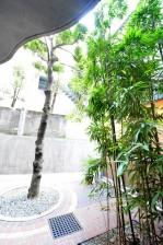 マグノリア 中庭