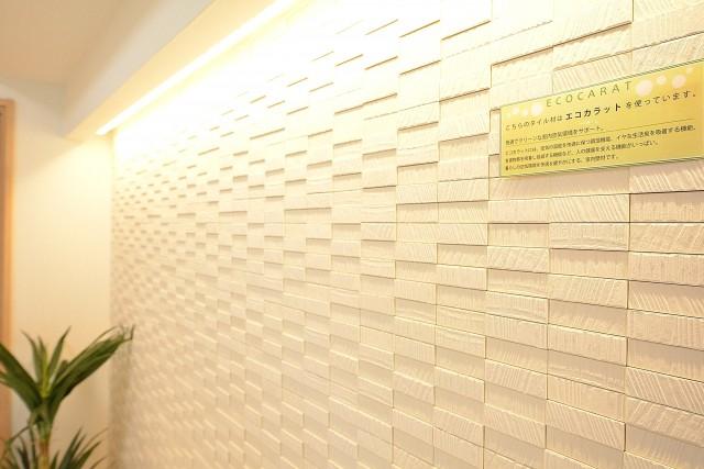 クレッセント目黒Ⅱ 6.0帖洋室のエコカラット