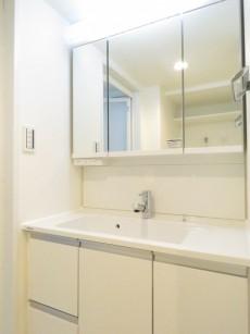 駒沢コーポラス 洗面化粧台