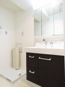 ユニーブル柿の木坂 洗濯機置場と洗面化粧台