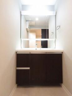 ロイヤルステージ大塚 洗面化粧台