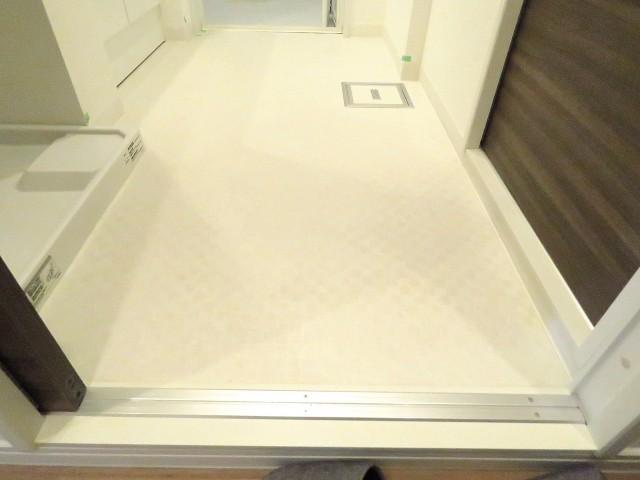 祖師谷大蔵サマリヤマンション 洗面室