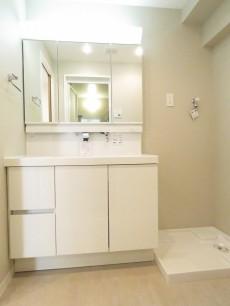 日商岩井第1玉川台マンション 洗面化粧台と洗濯機置場