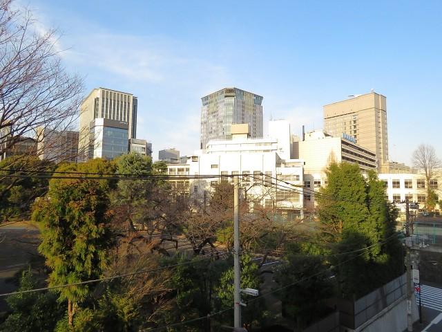 サンハイム永田町 眺望