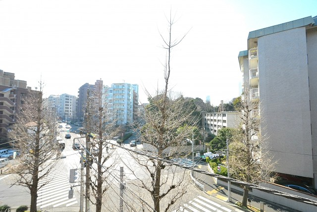 GSハイム南青山 8.5帖洋室のバルコニー眺望