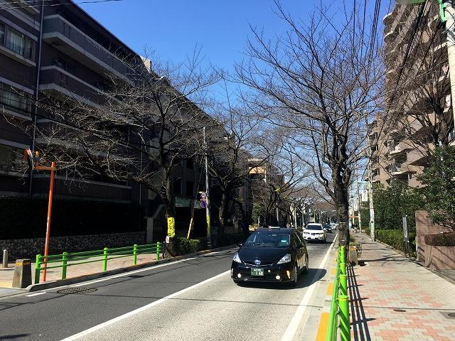 桜丘フラット 周辺環境