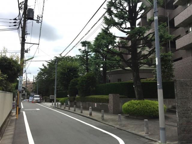桜丘フラット 前面道路