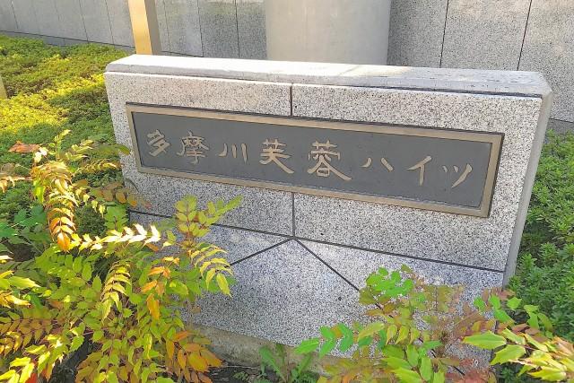 多摩川芙蓉ハイツ