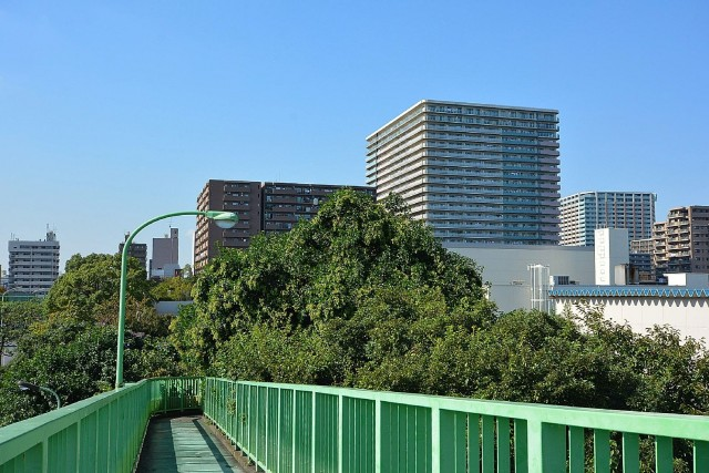 大森海岸駅周辺