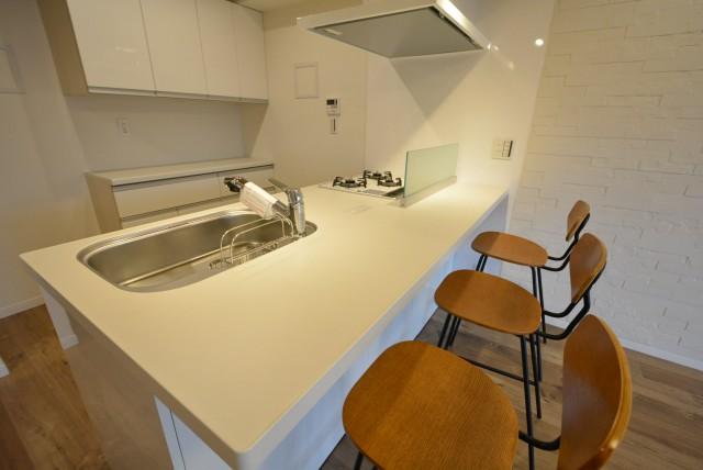 マンション駒場301号室 キッチン