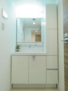 玉川コーポラス 洗面化粧台