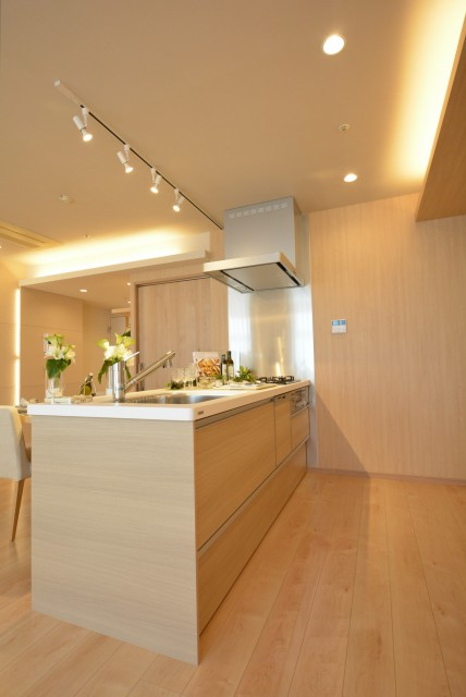 ラグナタワー (99)キッチン