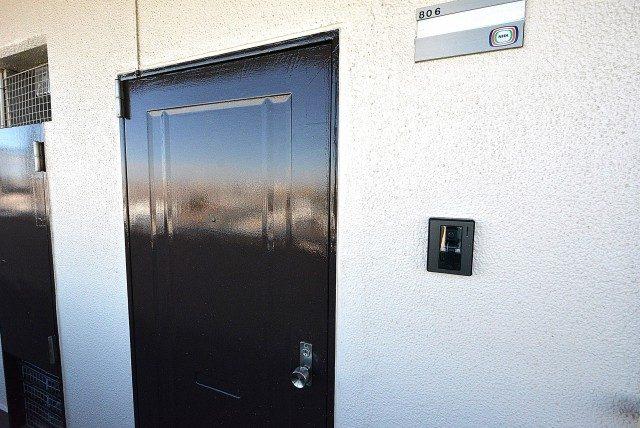 フラット田園調布806号室 ドア