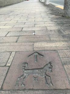 馬事公苑前ハイム 歩道