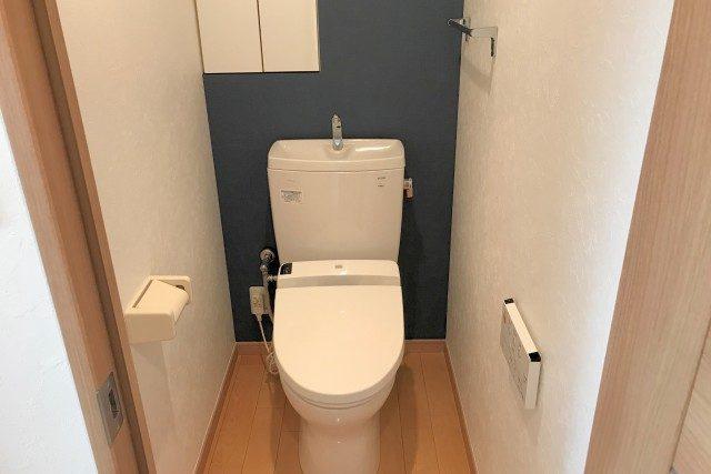 都立大コーポラス (48)トイレ