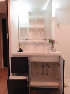 ライオンズマンション大森第3 洗面化粧台