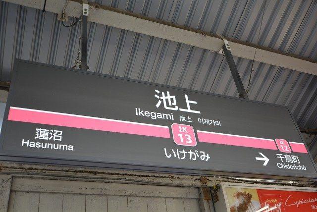 池上駅周辺 駅