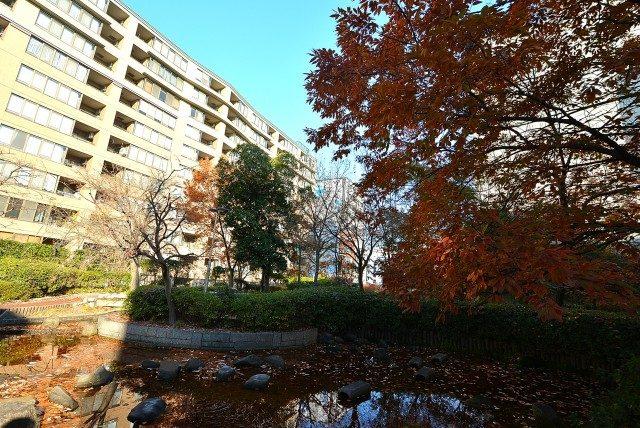 八丁堀駅周辺 桜丘屋上庭園