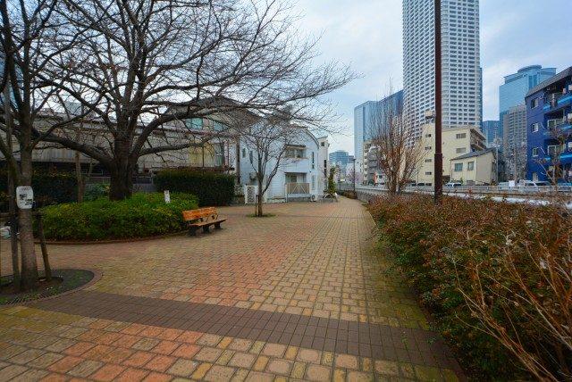 中野坂上駅周辺 (5)神田川沿い
