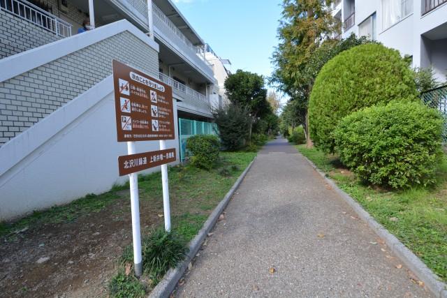四谷軒第五経堂シティコーポ