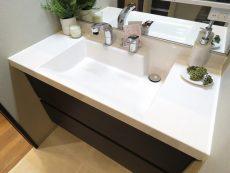 グリーンヒル小石川 洗面化粧台