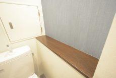 ライオンズマンション護国寺第3 トイレ