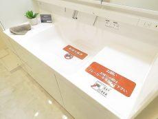 多摩川芙蓉ハイツ 洗面化粧台