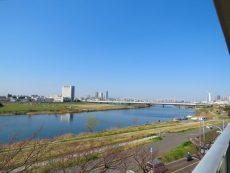 多摩川芙蓉ハイツ 南西眺望