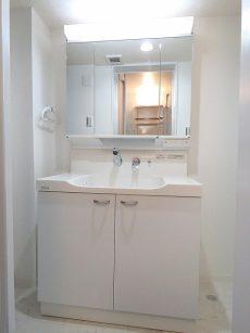 烏山南住宅 洗面化粧台
