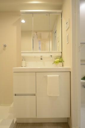 秀和恵比寿レジデンス219 洗面・浴室