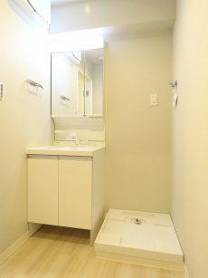 入谷アムフラット 洗面化粧台と洗濯機置場