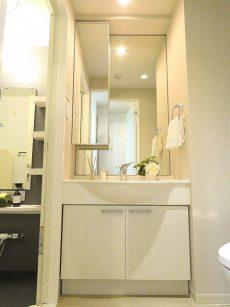コージーコート二子玉川 洗面化粧台