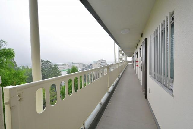 パシフィック馬事公苑1-9F (1)