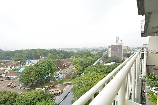パシフィック馬事公苑3-10F (65)