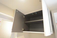 グリーンヒル新宿 洗面室