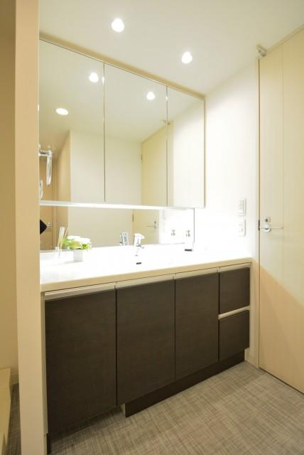 藤和学芸大学ホームズⅡ 洗面室