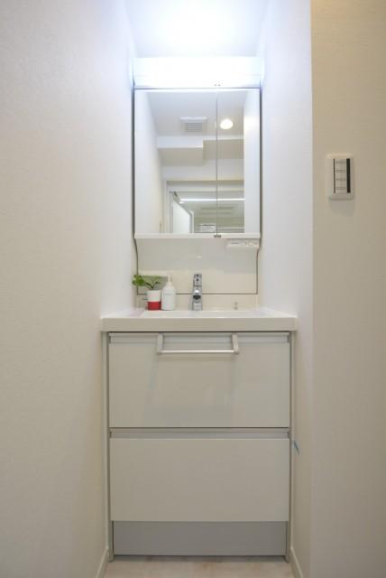 ビッグ武蔵野池袋 洗面室