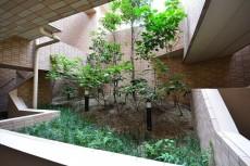 クローバー六本木 植栽