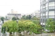 薬王寺ニューハイツ バルコニーからの眺望 公開空地の緑
