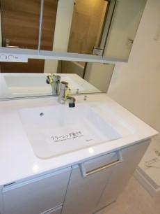薬王寺ニューハイツ シャワー付洗面化粧台